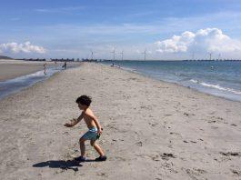 Schouwen-Duiveland-strand2