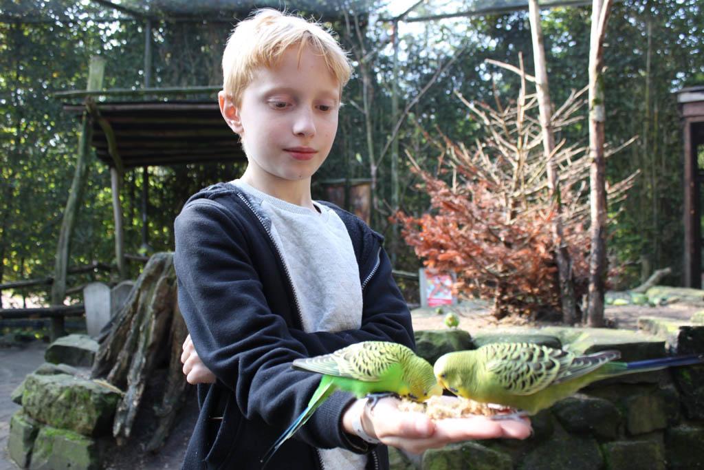 Bent is een echte natuur- en dierenliefhebber en gaat op WNF Rangerkamp.