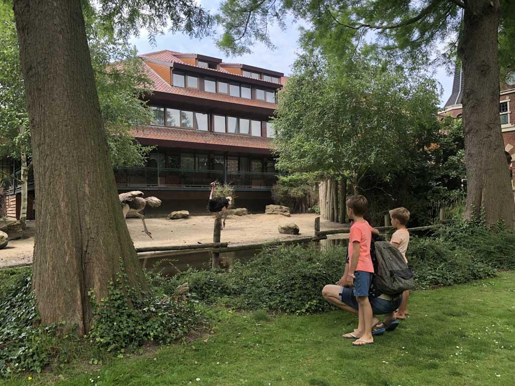 Wat gaaf! Het hotel staat ín het Vogelpark Avifauna. Struisvogels voor je balkonnetje.