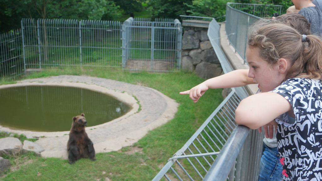 """""""Kijk, zie je die beer daar?"""""""