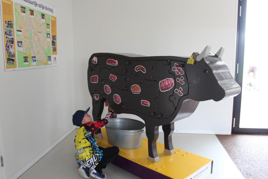 Leren op de stadsboerderij: dus hier komt ons stukje vlees vandaan.