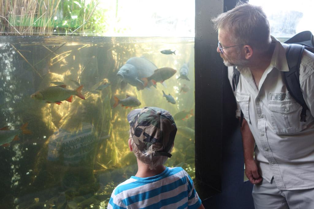 Onderwaterleven bij RIVEO