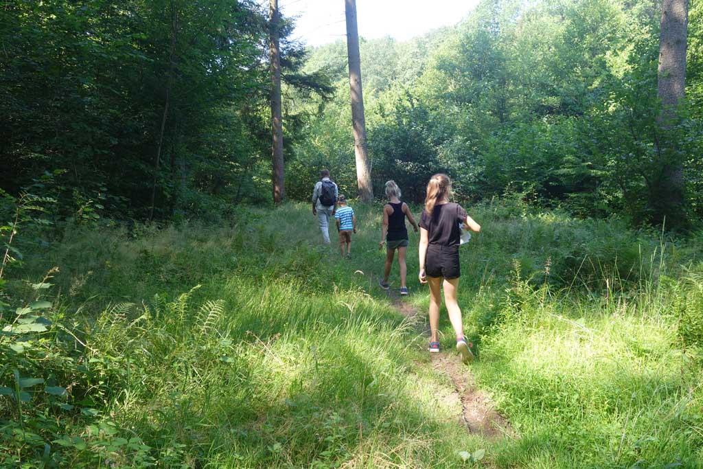 riveo bevertocht struinen door het bos