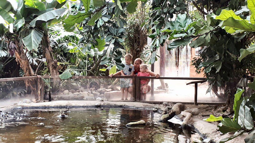 Almere Jungle is echt een leuke dierentuin voor peuters en kleuters