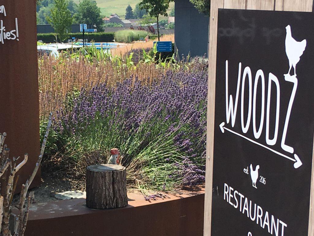 Lekker eten en zwemmen bij restaurant Woodz