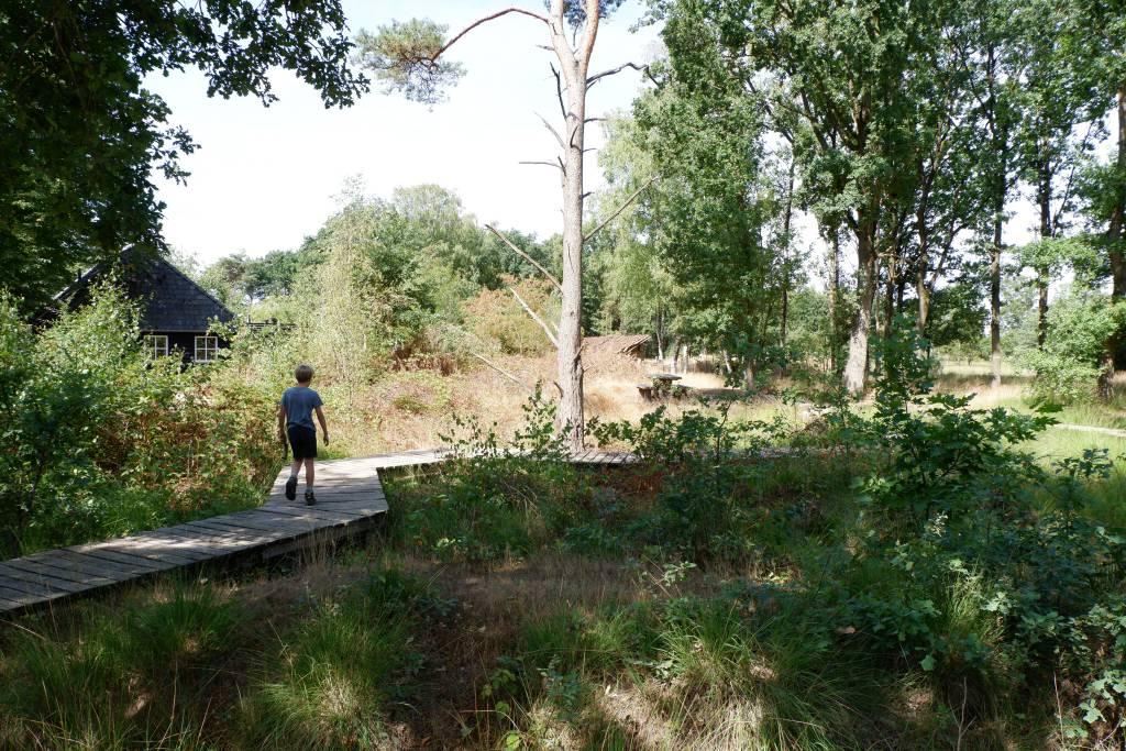 Wandelen over een vlonderpad bij de Strabrechtse Heide