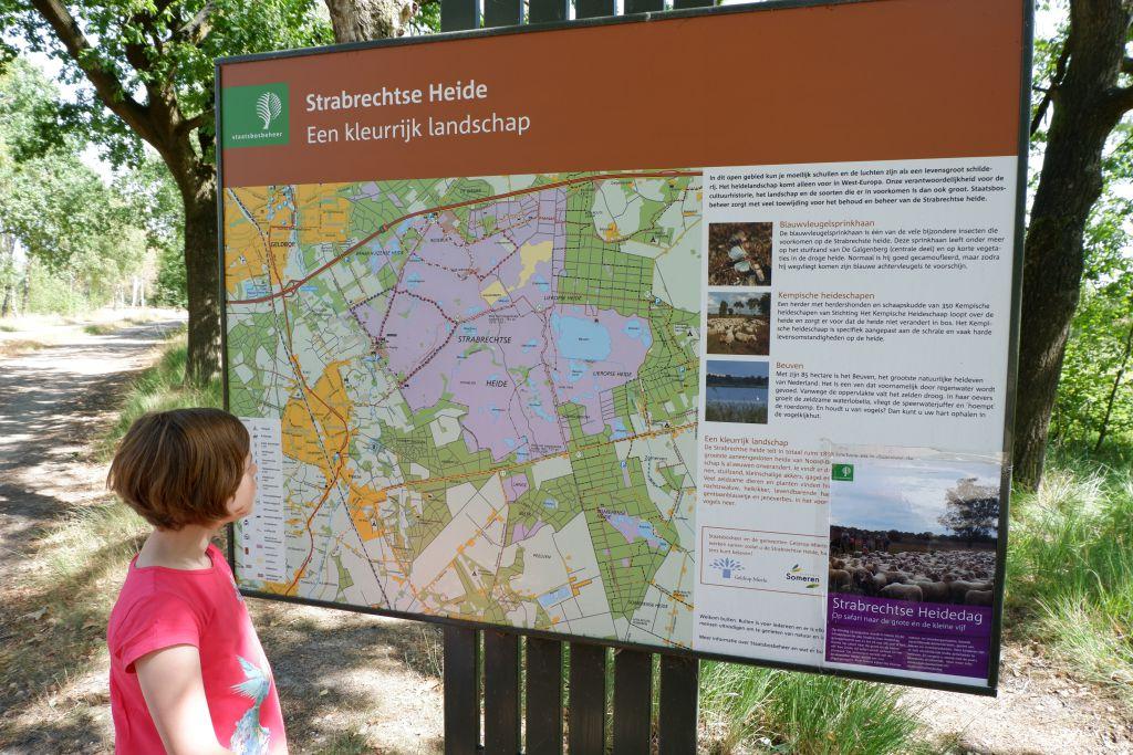 Informatiebord Strabrechtse Heide