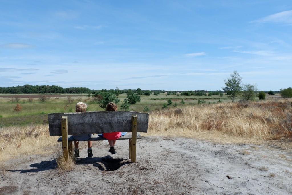 Genieten van het uitzicht op de Strabrechtse Heide