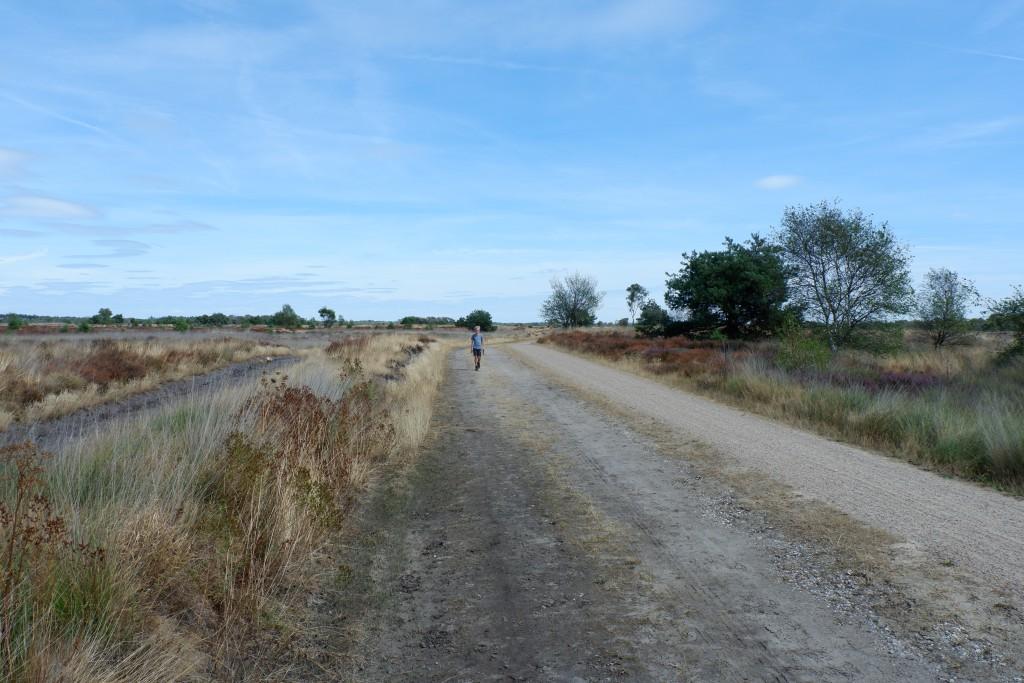 Het Boswachterspad Vennenroute biedt over het grootste deel van de route geen schaduw.