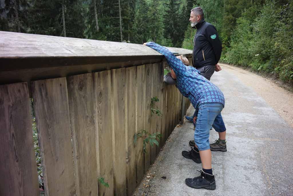 In de hoge hekken zijn kijkgaten gemaakt voor de kinderen