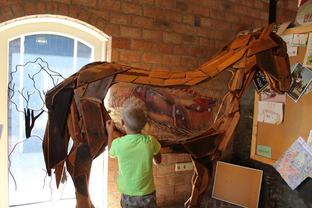 Meer informatie over paarden in het bezoekerscentrum.