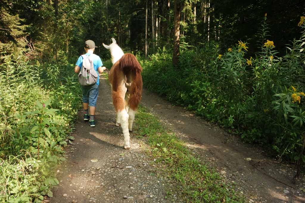 Tijdens het wandelen begonnen deze 2 te 'levelen'