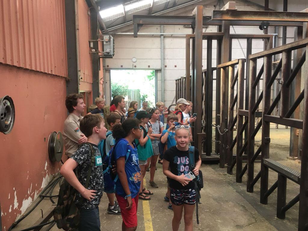 De kinderen mogen tijdens het WNF Rangers kamp echt achter de schermen kijken.