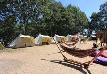 Het gezellige tentenkamp van Vinea Vakanties in de Beekse Bergen.