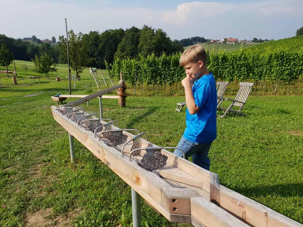 De knikkerbaan past helemaal in het wijnlandschap zuid-steiermark met kinderen