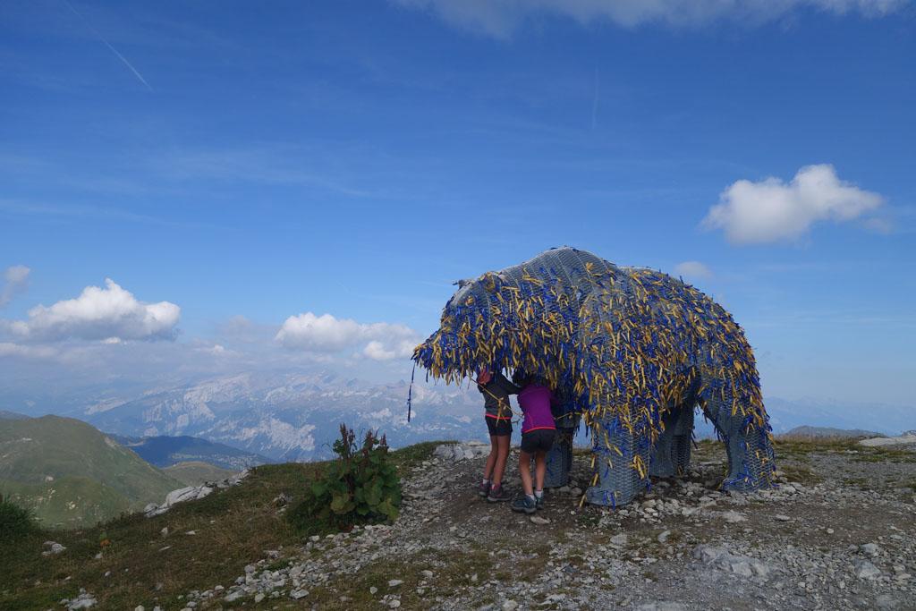 activiteiten in arosa beer op de berg