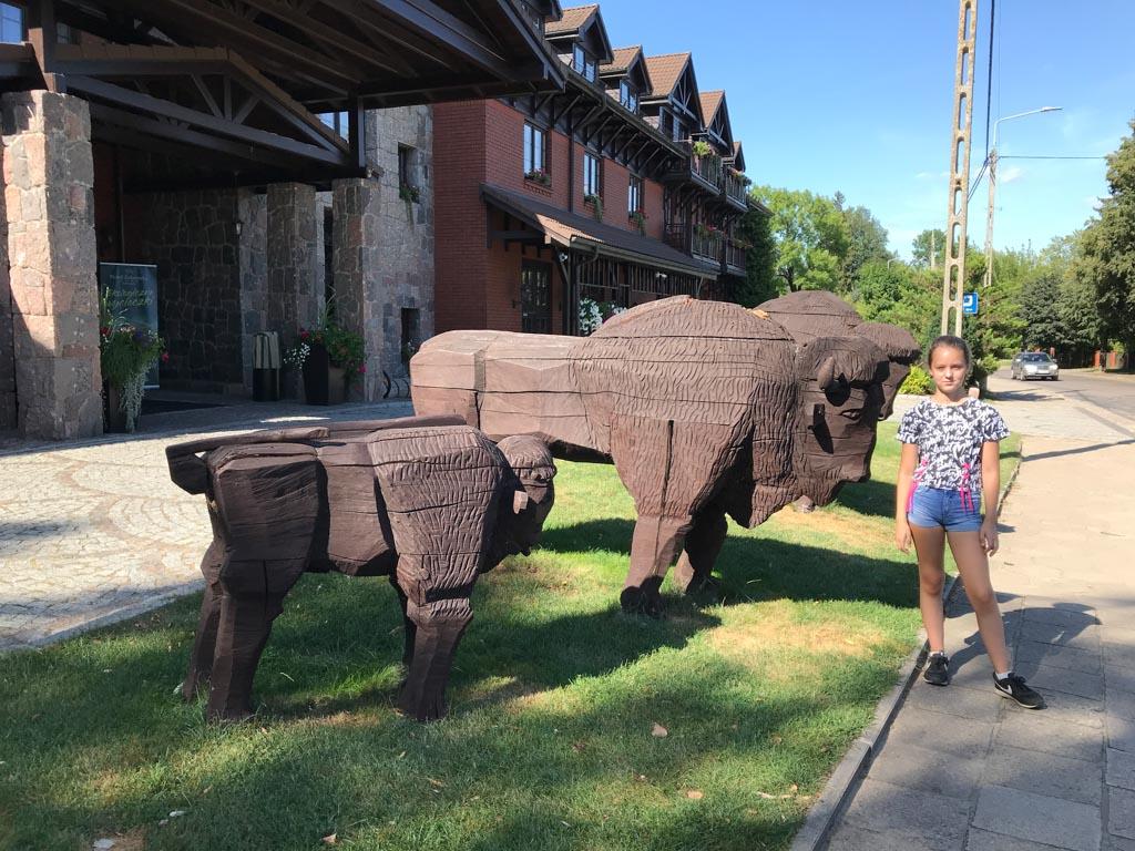 We passeren dit hotel in Bialowieza, met grote houten bizons voor de deur.