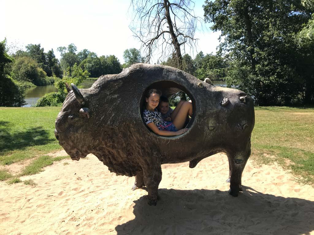 Nee hoor, ze zijn niet opgegeten door een bizon.