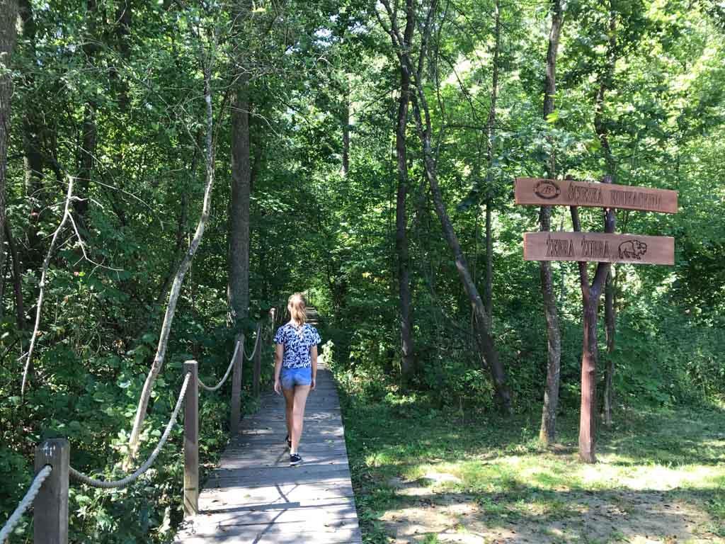 De wandelroute gaat een groot deel over een planken pad.