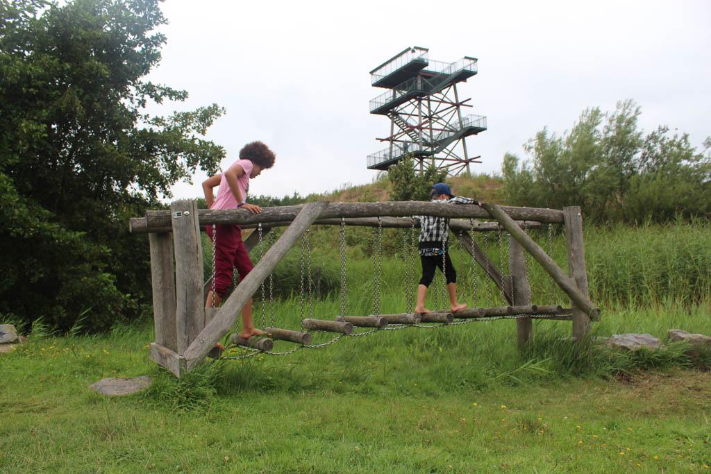 Op de achtergrond de uitkijktoren van De Helderse Vallei.
