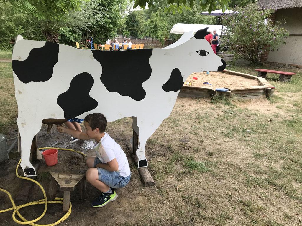 Camiel probeert de koe te melken.