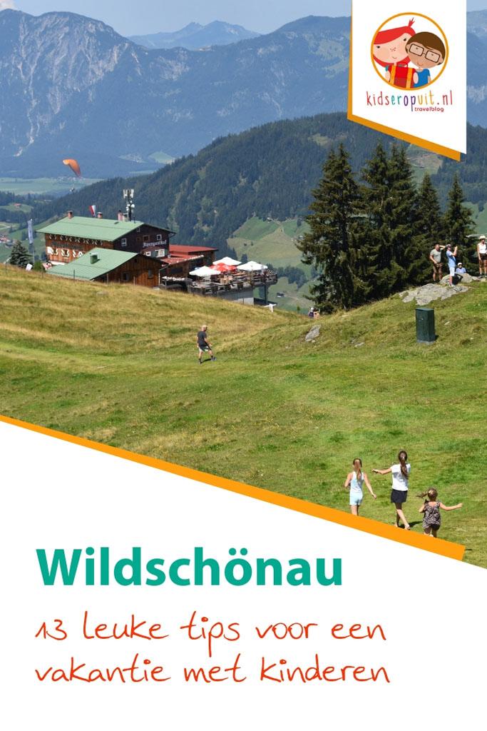 13 tips voor een vakantie in het Oostenrijkse Wildschönau met kinderen.