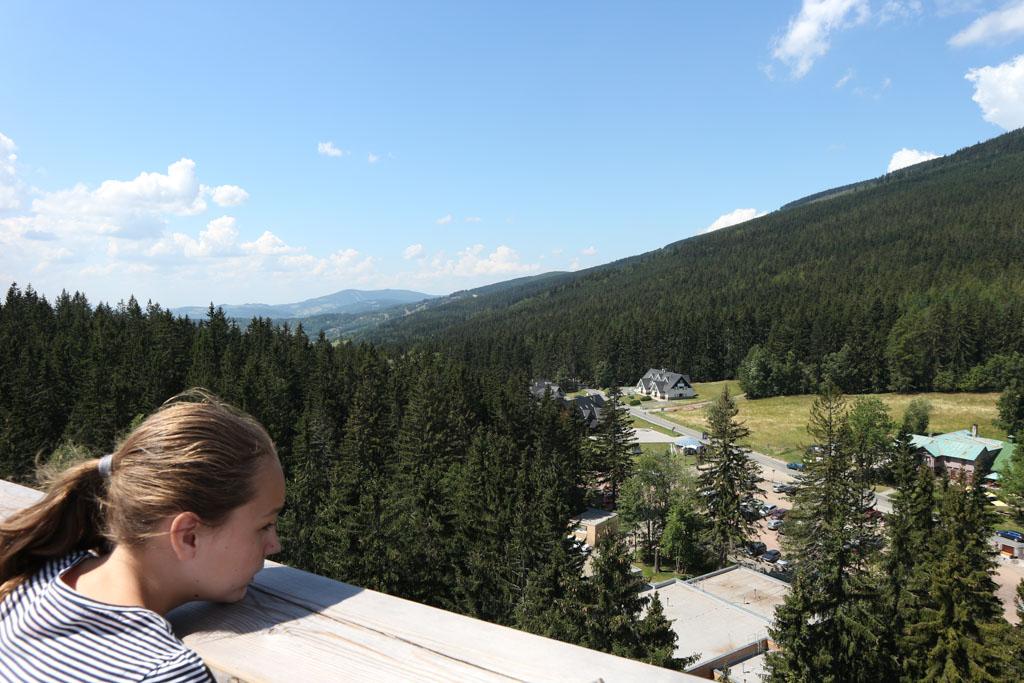 Vanaf de top van het boomkroonpad kunnen we de omgeving goed bekijken.