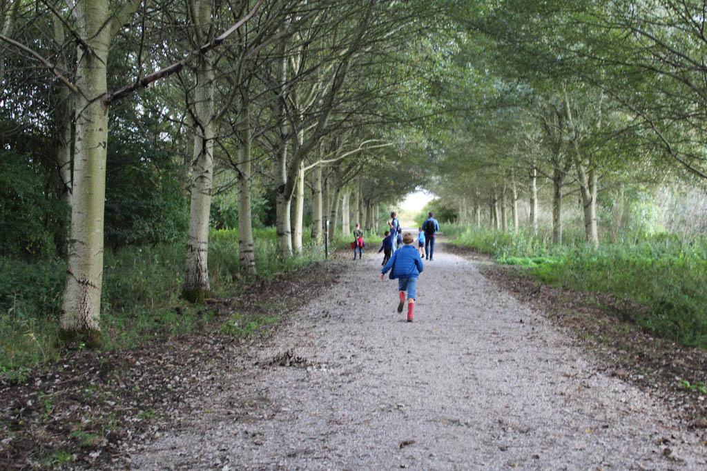 Hoewel we prachtig weer is, is het heel rustig in het bos. Hier lopen we langs de 'ogen-bomen'.