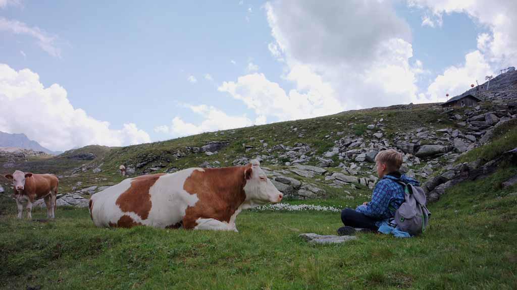 leukste-kabelbanen-in-karinthie Een laatste goed gesprek met de koe en dan is het tijd om te gaan