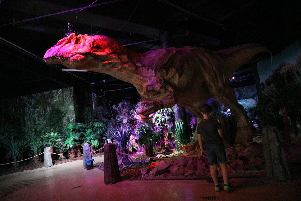 Het Dinopark is superleuk voor kleine fans.