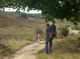 Veluwe-wandelen-met-kinderen