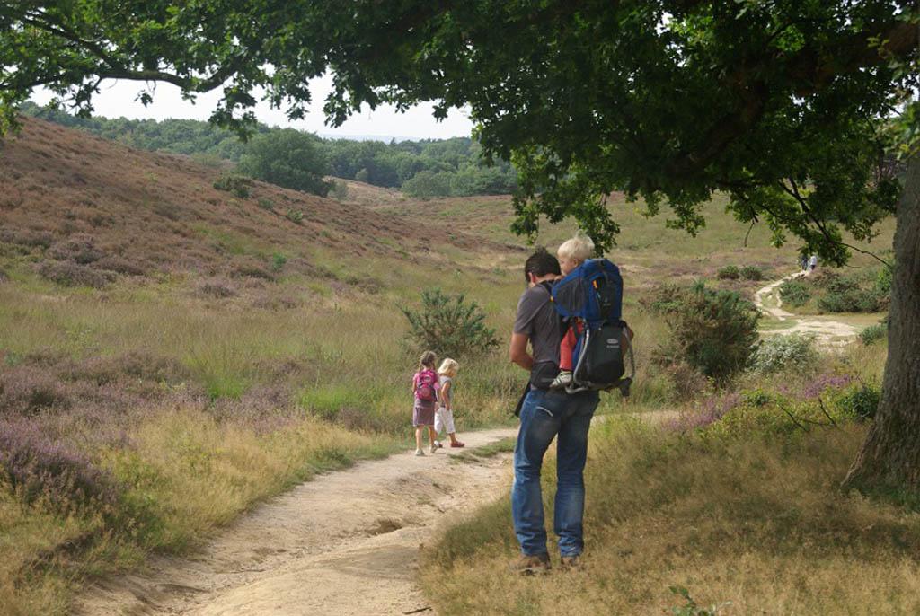 Wandelen over de Posbank met kinderen