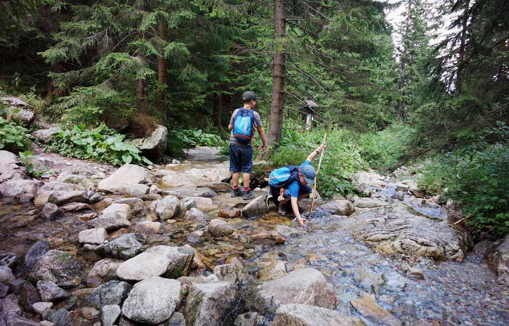 Bij Tri Vody komen diverse riviertjes samen. Laten we een dam bouwen wandelen-in-het-tatra-gebergte-met-kinderen