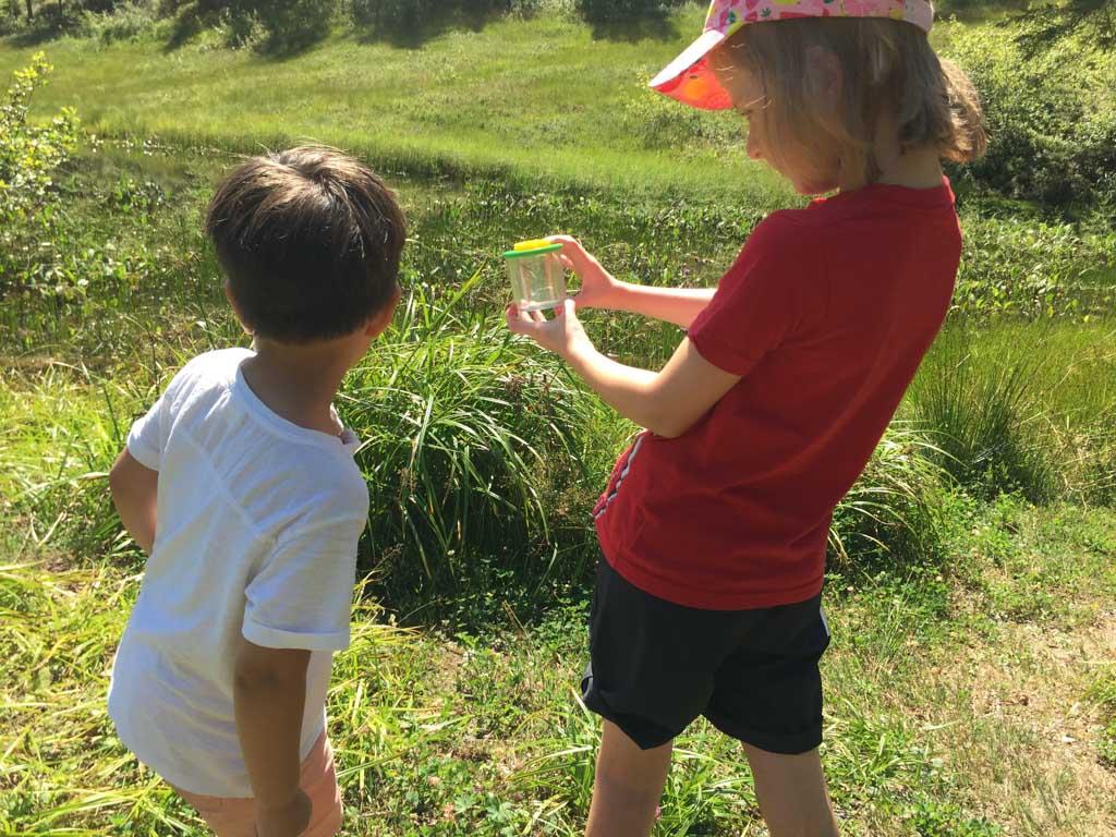 Ook de andere kinderen hebben insecten gevangen.