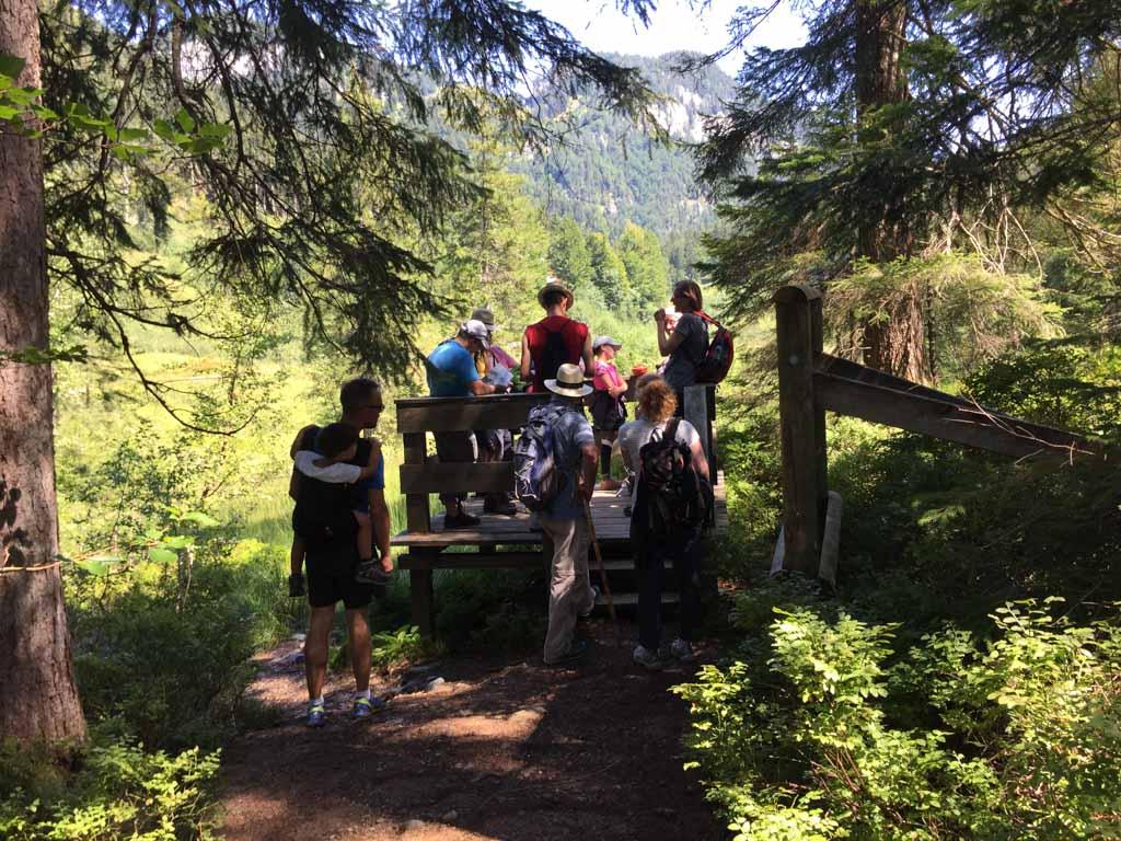 De familiewandeling in Wilder Kaiser gaat langs mooie uitzichtpunten.