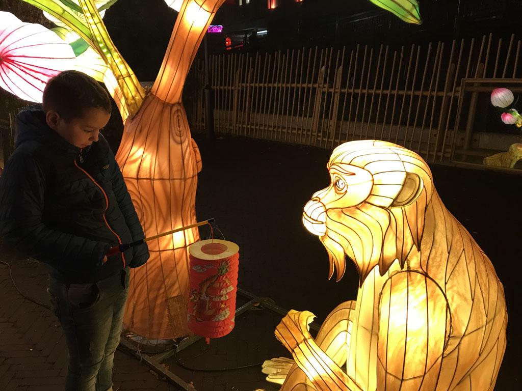 Tijd voor een gesprek? Onze 9-jarige probeert contact te krijgen met deze China Light aap.
