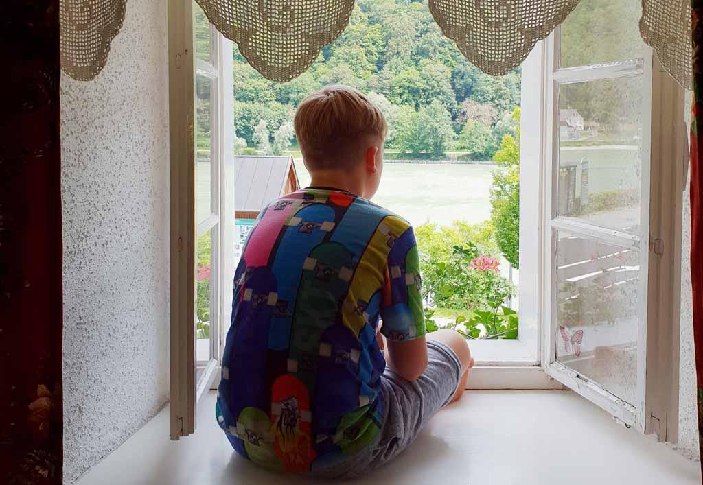 Met uitzicht op de Donau. 'An der Schönen Blauen Donau'