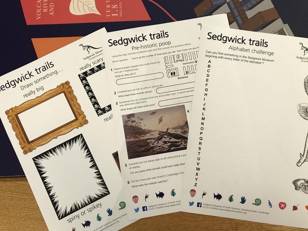 Ook het Sedgwick Museum heeft volop mogelijkheden voor kinderen.