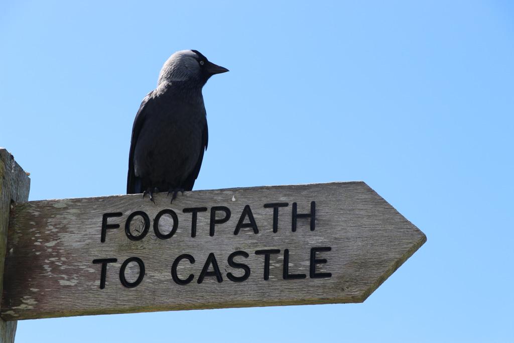 Kan niet missen, het kasteel van koning Arthur staat goed aangegeven.