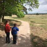 Vakantie op de Veluwe met kinderen