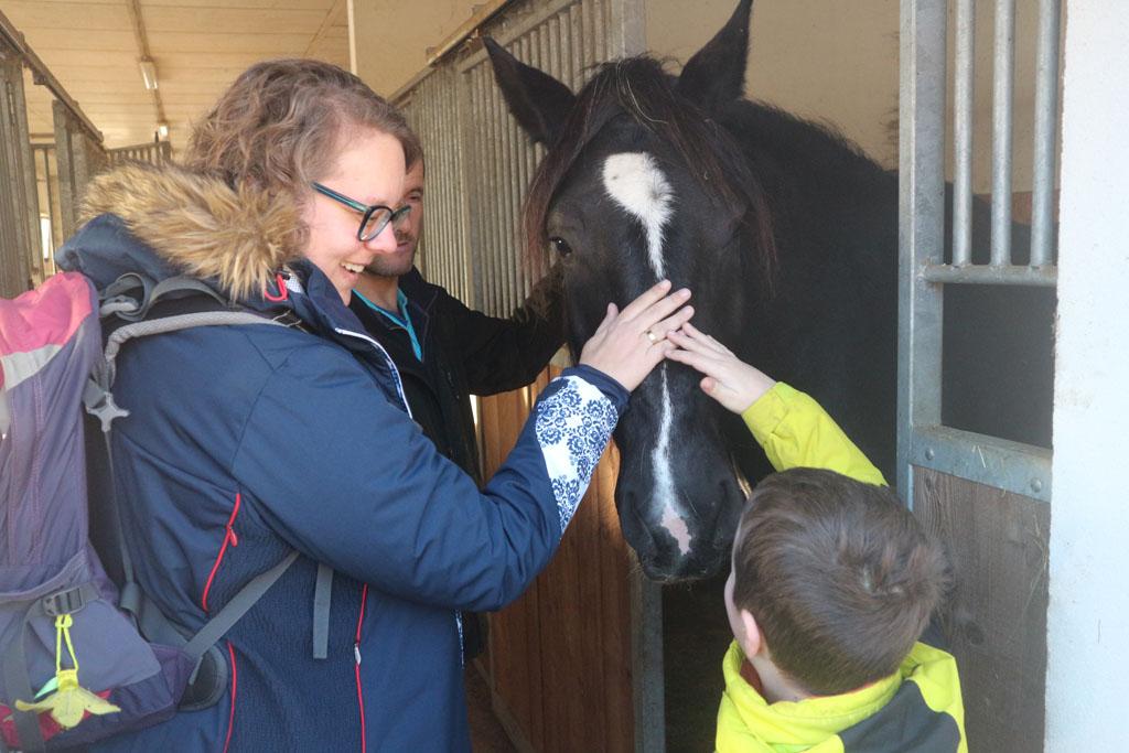 Een van de paarden aaien in de stal.