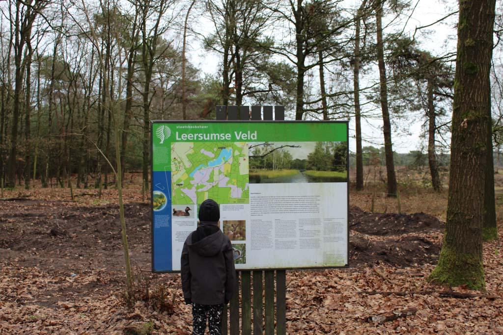 In het gebied van het Leersumse Veld is bos, heide, stuifzand en plassen.