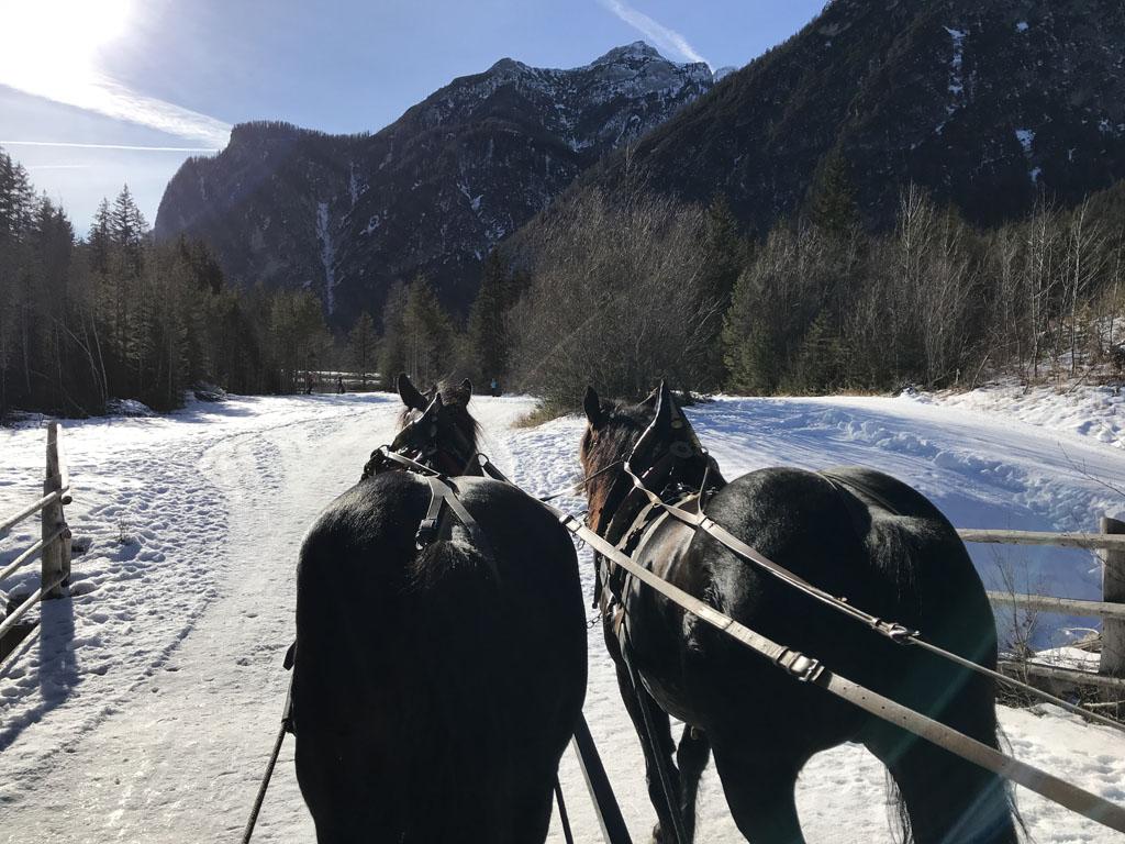 Schitterend om zo door het winterse landschap te rijden.
