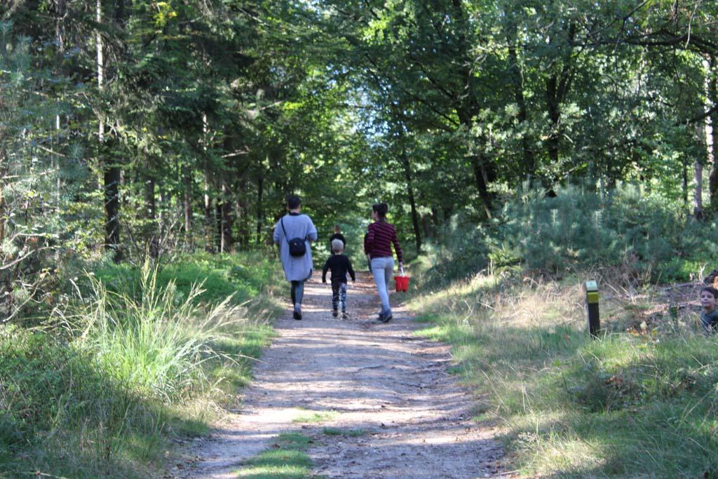 De wandelpaden zijn ook goed begaanbaar. Ook met een kinderwagen is deze route goed te doen.