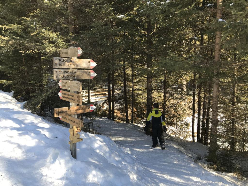 Onze wandeling gaat grotendeels door het bos.