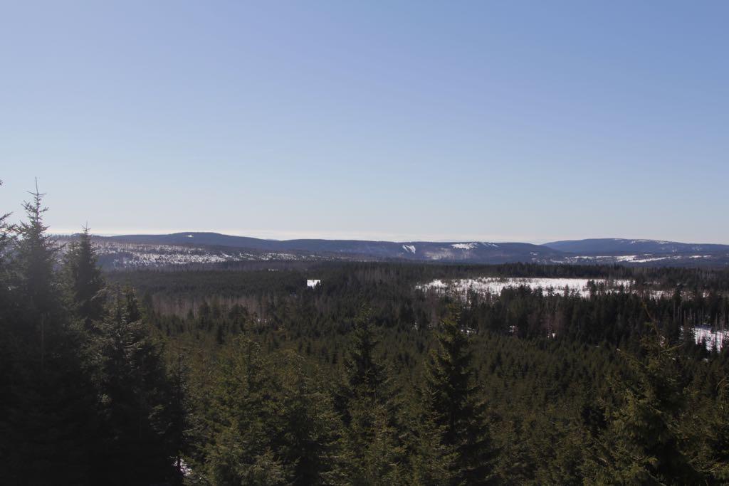 Een van de vele uitzichten uit de trein over de bossen van de Harz.