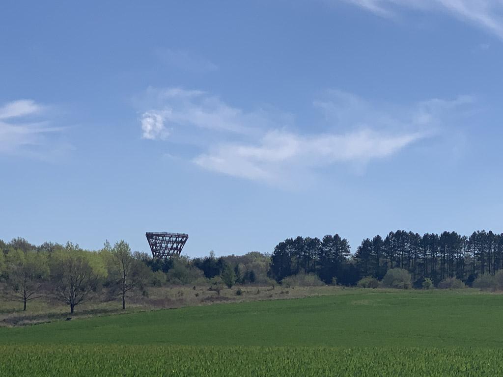 Daar moeten we zijn! Uitkijktoren 'Forest Tower' steekt boven het bos uit.
