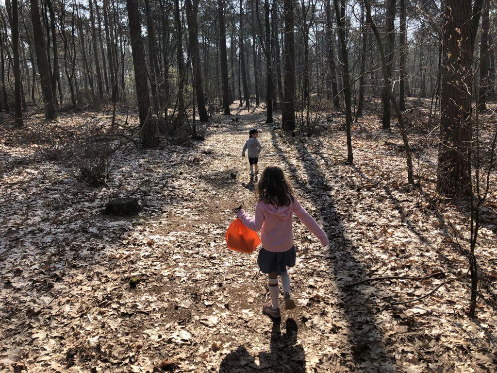 Heerlijk om zo dwars door het bos te wandelen.