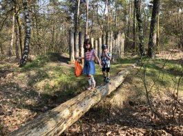 kidswandeling het wolvenspoor15