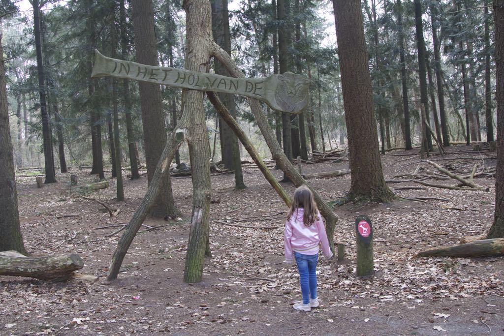 Welkom in bosspeeltuin In het Hol van de Leeuw op de Lemelerberg!